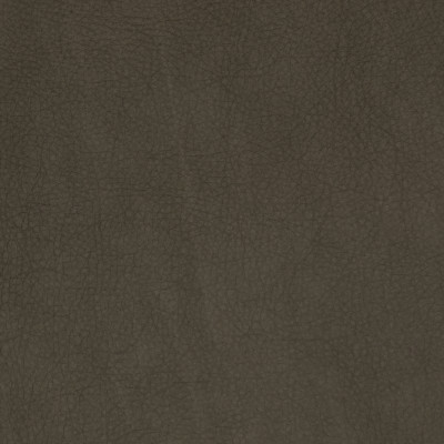F2062 Shadow Fabric: L14, L13, LEATHER, LEATHER HIDE, HIDE, FULL HIDE, NATURAL HIDE, NATURAL LEATHER, COW HIDE, BOVINE, UPHOLSTERY LEATHER, UPHOLSTERY HIDE, LIGHT GREY LEATHER, LIGHT GREY, LIGHT GRAY LEATHER, LIGHT GRAY, TAUPE, PERFORMANCE, PERFORMANCE LEATHER, ITALY