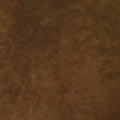 F2078 Rust Fabric: L14, L13, LEATHER, LEATHER HIDE, HIDE, FULL HIDE, NATURAL HIDE, NATURAL LEATHER, COW HIDE, BOVINE, UPHOLSTERY LEATHER, UPHOLSTERY HIDE, CHOCOLATE, CHOCOLATE BROWN, DARK TAN, WALNUT, PERFORMANCE, PERFORMANCE LEATHER, BRAZIL, BRAZILIAN LEATHER