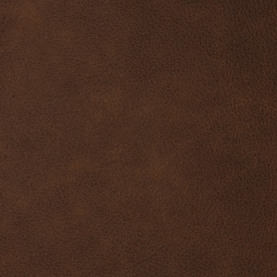 F2083 Amber Fabric: L14, L13, LEATHER, LEATHER HIDE, HIDE, FULL HIDE, NATURAL HIDE, NATURAL LEATHER, COW HIDE, BOVINE, UPHOLSTERY LEATHER, UPHOLSTERY HIDE, PERFORMANCE, PERFORMANCE LEATHER, BRAZIL