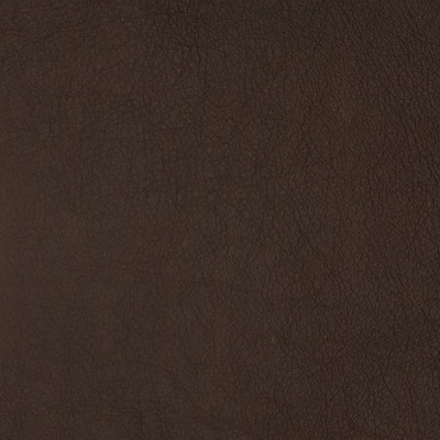 F2089 Tawny Fabric: L14, L13, LEATHER, LEATHER HIDE, HIDE, FULL HIDE, NATURAL HIDE, NATURAL LEATHER, COW HIDE, BOVINE, UPHOLSTERY LEATHER, UPHOLSTERY HIDE, PERFORMANCE, PERFORMANCE LEATHER, ITALY