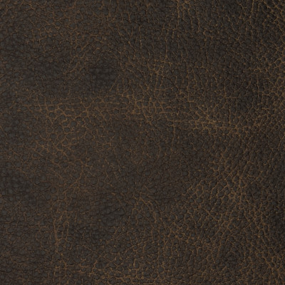 F2096 Bandwagon Fabric: L14, L13, LEATHER, LEATHER HIDE, HIDE, FULL HIDE, NATURAL HIDE, NATURAL LEATHER, COW HIDE, BOVINE, UPHOLSTERY LEATHER, UPHOLSTERY HIDE, PERFORMANCE, PERFORMANCE LEATHER, BRAZIL