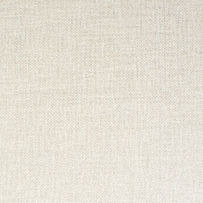 F2123 Pearl Fabric: E68, WHITE, CHENILLE, SOLID, SOLIDS, PLAIN, SOLID WHITE, PLUSH, SOLID WHITE CHENILLE