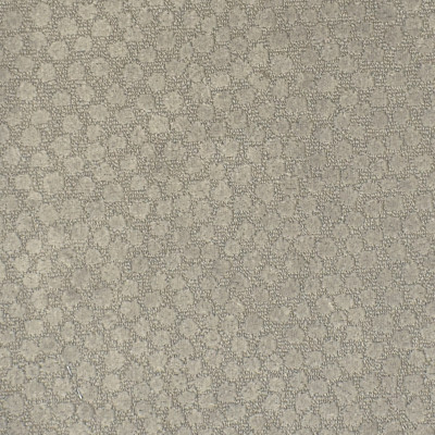 F2193 Dove Fabric: E69, NEUTRAL, TAN, DOTS, POLKA DOT, POLKA DOTS, SOFT, TEXTURE, TEXTURED, SOFT TEXTURED, SOFT TEXTURE