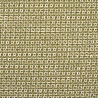 F2353 Cactus Fabric: E71, GREEN WOVEN TEXTURE, GREEN AND NEUTRAL, WOVEN TEXTURE, TEXTURED GREEN AND NEUTRAL, CHUNKY TEXTURE, GREEN CHUNKY TEXTURE