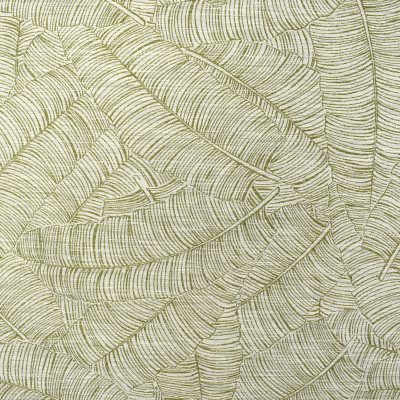 F2354 Leaf Fabric: E71, TROPICAL, TROPICAL WOVEN, GREEN WOVEN, GREEN TROPICAL, LEAF, GREEN LEAF, GREEN FOLIAGE, GREEN FOLIAGE WOVEN, GREEN TROPICAL FOLIAGE