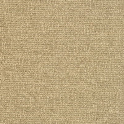 F2458 Beige Fabric: E73, SOLID TEXTURE, NEUTRAL TEXTURE, SOLID WOVEN, WOVEN TEXTURE, NEUTRAL WOVEN, BEIGE TEXTURE, SOLID BEIGE