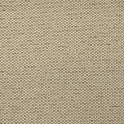 F2576 Ecru Fabric: E75, MADE IN USA, REVOLUTION, OUTDOOR, REVOLUTION OUTDOOR, PERFORMANCE, BLEACH CLEANABLE, SOLID OUTDOOR, NEUTRAL OUTDOOR, NEUTRAL SOLID