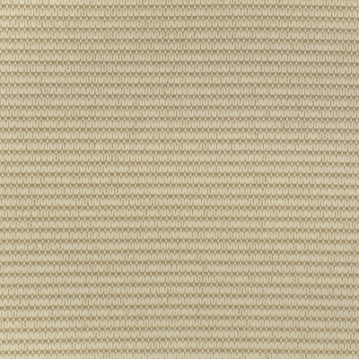 F2577 Flax Fabric: E75, MADE IN USA, REVOLUTION, OUTDOOR, REVOLUTION OUTDOOR, PERFORMANCE, BLEACH CLEANABLE, OUTDOOR STRIPE, NEUTRAL TEXTURE, TEXTURED STRIPE, FLAX, NEUTRAL STRIPE