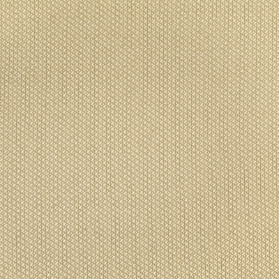 F2578 Vanilla Fabric: E75, MADE IN USA, REVOLUTION, OUTDOOR, REVOLUTION OUTDOOR, PERFORMANCE, BLEACH CLEANABLE, OUTDOOR TWILL, NEUTRAL TWILL