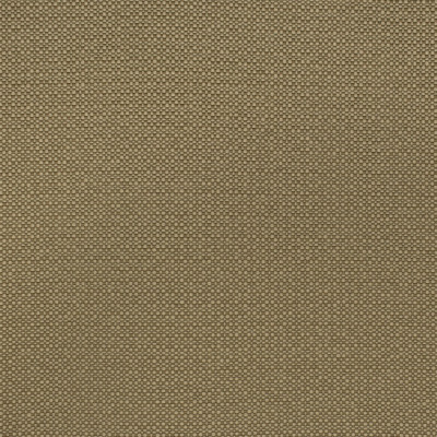 F2594 Jute Fabric: E75, MADE IN USA, REVOLUTION, OUTDOOR, REVOLUTION OUTDOOR, PERFORMANCE, BLEACH CLEANABLE, SOLID OUTDOOR, BROWN OUTDOOR, BROWN SOLID