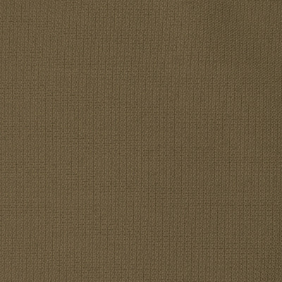 F2597 Taupe Fabric: E75, MADE IN USA, REVOLUTION, OUTDOOR, REVOLUTION OUTDOOR, PERFORMANCE, BLEACH CLEANABLE, SOLID BROWN, OUTDOOR BROWN, BROWN OUTDOOR, SOLID OUTDOOR, TAUPE OUTDOOR