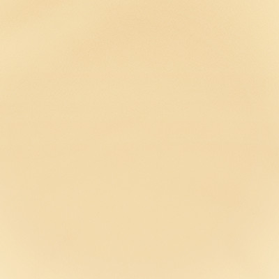 F2864 Vanilla Fabric: E77, HEALTHCARE, HOSPITALITY, RESIDENTIAL, AUTO, CONTRACT, MARINE, BLEACH CLEANABLE, NFPA 260, NFPA260, MVSS302, MVSS 302, VINYL, ENDUREPEL, PERFORMANCE, PERFORMANCE VINYL, NEUTRAL, CREAM, VANILLA