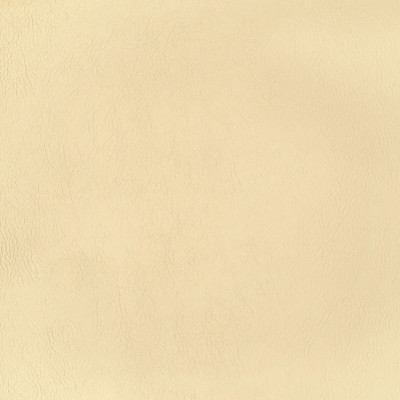 F2865 Pearl Fabric: E77, HEALTHCARE, HOSPITALITY, RESIDENTIAL, AUTO, CONTRACT, MARINE, BLEACH CLEANABLE, NFPA 260, NFPA260, MVSS302, MVSS 302, VINYL, ENDUREPEL, PERFORMANCE, PERFORMANCE VINYL, PEARL, METALLIC VINYL, NEUTRAL