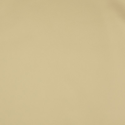 F2866 Cream Fabric: E77, HEALTHCARE, HOSPITALITY, RESIDENTIAL, AUTO, CONTRACT, MARINE, BLEACH CLEANABLE, NFPA 260, NFPA260, MVSS302, MVSS 302, VINYL, ENDUREPEL, PERFORMANCE, PERFORMANCE VINYL, NEUTRAL, CREAM, VANILLA