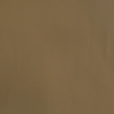 F2868 Taupe Fabric: E77, HEALTHCARE, HOSPITALITY, RESIDENTIAL, AUTO, CONTRACT, MARINE, BLEACH CLEANABLE, NFPA 260, NFPA260, MVSS302, MVSS 302, VINYL, ENDUREPEL, PERFORMANCE, PERFORMANCE VINYL, TAUPE, NEUTRAL