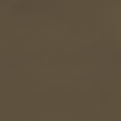 F2870 Mocha Fabric: E77, HEALTHCARE, HOSPITALITY, RESIDENTIAL, AUTO, CONTRACT, MARINE, BLEACH CLEANABLE, NFPA 260, NFPA260, MVSS302, MVSS 302, VINYL, ENDUREPEL, PERFORMANCE, PERFORMANCE VINYL, GRAY, GREY, MUSHROOM