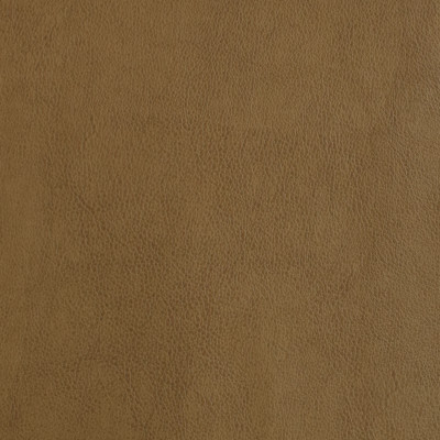 F2872 Tan Fabric: E77, HEALTHCARE, HOSPITALITY, RESIDENTIAL, AUTO, CONTRACT, MARINE, BLEACH CLEANABLE, NFPA 260, NFPA260, MVSS302, MVSS 302, VINYL, ENDUREPEL, PERFORMANCE, PERFORMANCE VINYL, BROWN, FAUX LEATHER, TAN