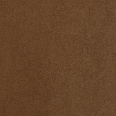 F2873 Amber Fabric: E77, HEALTHCARE, HOSPITALITY, RESIDENTIAL, AUTO, CONTRACT, MARINE, BLEACH CLEANABLE, NFPA 260, NFPA260, MVSS302, MVSS 302, VINYL, ENDUREPEL, PERFORMANCE, PERFORMANCE VINYL, BROWN, FAUX LEATHER, AMBER