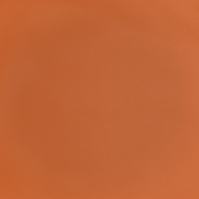 F2896 Pumpkin Spice Fabric: E77, HEALTHCARE, HOSPITALITY, RESIDENTIAL, AUTO, CONTRACT, MARINE, BLEACH CLEANABLE, NFPA 260, NFPA260, MVSS302, MVSS 302, VINYL, ENDUREPEL, PERFORMANCE, PERFORMANCE VINYL, ORANGE, ORANGE VINYL