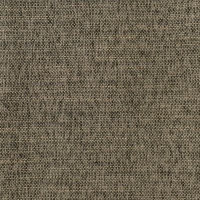 F2950 Coal Fabric: E79, TEXTURE, WOVEN, BLACK, BLACK AND TAN, PLAIN