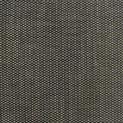 F3120 Dominos Fabric: E82, ENDUREPEL, SOIL AND STAIN REPELLENT, LIQUID RESISTANT, EASY CLEAN FINISH, ECO-FRIENDLY, ANTIMICROBIAL, ANTIBACTERIAL, HOSPITALITY, RESIDENTIAL, PERFORMANCE, SOLID, TEXTURE, WOVEN, BLACK, BLACK AND WHITE, PLAIN
