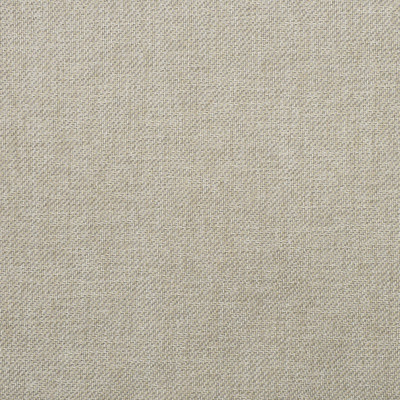 F3542 Flax Fabric: E93, PERFORMANCE, SUSTAIN, MADE IN USA, BLEACH CLEANABLE, SOLID, WOVEN, NEUTRAL, FLAX, TWILL