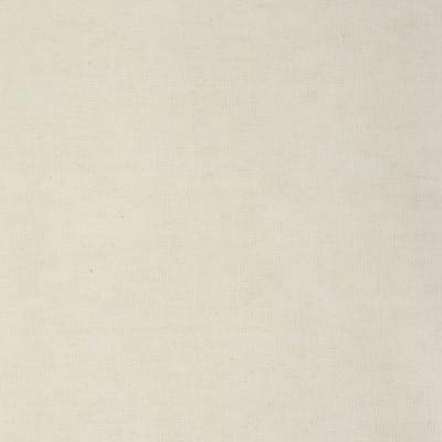F3624 Flour Fabric: E96, WHITE, LINEN, COTTON, PLAIN, SOLID