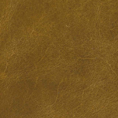 F3795 Wheat Gold Fabric: L15, UPHOLSTERY LEATHER, UPHOLSTERY, GOLD LEATHER, HIDE, LEATHER HIDE, BROWN LEATHER, BROWN HIDE, GOLD LEATHER HIDE, NEUTRAL, NEUTRAL LEATHER, WAXY LEATHER, COW, COW HIDE