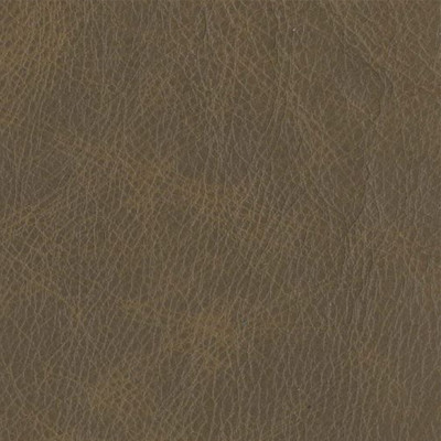 F3797 Coyote Fabric: L15, UPHOLSTERY, UPHOLSTERY LEATHER, HIDE, LEATHER HIDE, BROWN LEATHER, BROWN LEATHER HIDE, NEUTRAL, NEUTRAL LEATHER, NEUTRAL LEATHER HIDE, NATURAL GRAIN LEATHER, PERFORMANCE, PERFORMANCE LEATHER, PROTECTED, PROTECTED LEATHER, COW, COW HIDE