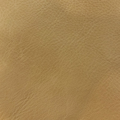 F3805 Bone Fabric: L15, UPHOLSTERY, UPHOLSTERY LEATHER, HIDE, LEATHER HIDE, SKIN, CREAM, NEUTRAL LEATHER, NEUTRAL LEATHER HIDE, IVORY LEATHER, IVORY LEATHER HIDE, OFF WHITE, OFF WHITE LEATHER, NATURAL GRAIN LEATHER, PERFORMANCE, PERFORMANCE LEATHER, PROTECTED, PROTECTED LEATHER, COW, COW HIDE