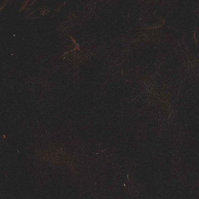 F3812 Oak Fabric: L15, UPHOLSTERY, UPHOLSTERY LEATHER, DARK BROWN, HIDE, LEATHER HIDE, BROWN LEATHER, BROWN HIDE, BROWN LEATHER HIDE, DARK BROWN LEATHER, NEUTRAL, NEUTRAL LEATHER, WAXY LEATHER, COW, COW HIDE