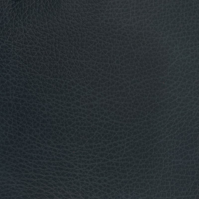 F3830 Rio Fabric: L15, UPHOLSTERY, UPHOLSTERY LEATHER, HIDE, LEATHER HIDE, BLUE LEATHER, BLUE LEATHER HIDE, DEEP BLUE, NATURAL GRAIN LEATHER, PERFORMANCE, PERFORMANCE LEATHER, PROTECTED, PROTECTED LEATHER, COW, COW HIDE