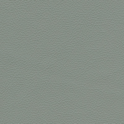 F3832 Tempest Fabric: L15, UPHOLSTERY, UPHOLSTERY LEATHER, HIDE, LEATHER HIDE, GREY, GRAY, GREY LEATHER, GREY LEATHER HIDE, GRAY LEATHER, GRAY LEATHER HIDE, NATURAL GRAIN LEATHER, COW, COW HIDE