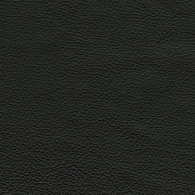 F3834 Ink Fabric: L15, UPHOLSTERY, UPHOLSTERY LEATHER, HIDE, LEATHER HIDE, BLACK LEATHER, BLACK LEATHER HIDE, NATURAL GRAIN LEATHER, COW, COW HIDE