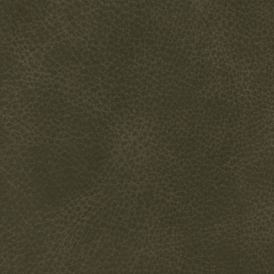 F3835 Dark Charcoal Fabric: L15, UPHOLSTERY, UPHOLSTERY LEATHER, LEATHER HIDE, DISTRESSED, DISTRESSED LEATHER, TEXTURED LEATHER, BLACK LEATHER, FULL GRAIN LEATHER, GRAIN, PERFORMANCE, PERFORMANCE LEATHER, PROTECTED, PROTECTED LEATHER, BLACK LEATHER HIDE, HIDE, COW, COW HIDE