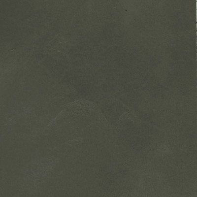 F3839 Marine Fabric: L15, UPHOLSTERY, UPHOLSTERY LEATHER, GRAY, GREY, HIDE, LEATHER HIDE, GRAY LEATHER, GRAY HIDE, GRAY LEATHER HIDE, DARK GRAY LEATHER, DARK GRAY, GREY LEATHER, WAXY LEATHER, COW, COW HIDE