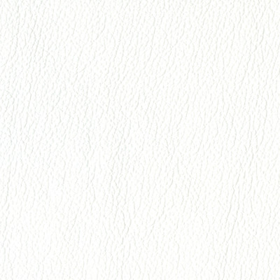 F3842 Snow Fabric: L15, UPHOLSTERY, UPHOLSTERY LEATHER, HIDE, LEATHER HIDE, WHITE LEATHER, WHITE LEATHER HIDE, NATURAL GRAIN LEATHER, COW, COW HIDE