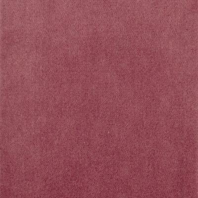 S1062 Berry Fabric: S02, SOLID VELVET, PINK VELVET, PINK SOLID VELVET, PINK SOLID, VELVET PINK,  ANNA ELISABETH