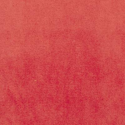 S1064 Papaya Fabric: S02, SOLID VELVET, PINK VELVET, PINK SOLID VELVET, PINK SOLID, VELVET PINK,  ANNA ELISABETH