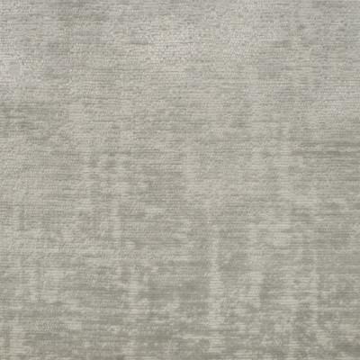 S1094 Dove Fabric: S03, PLUSH, PILED HIGH, PLUSH VELVET, VELVET, THICK VELVET, WET VELVET, MID CENTURY MODERN, WHITE VELVET, CREAM VELVET, IVORY VELVET, WHITE PLUSH VELVET, CREAM PLUSH VELVET, IVORY PLUSH VELVET, HIGH PILE VELVET, DOVE, ANNA ELISABETH