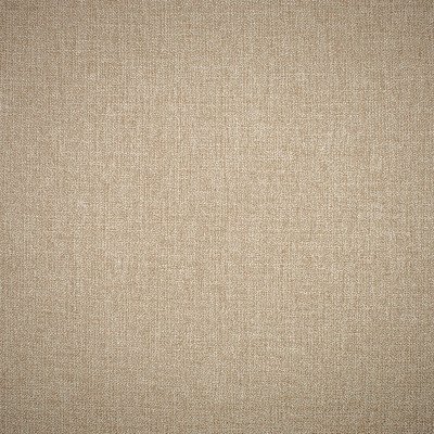 S1423 Desert Fabric: S09, ANNA ELISABETH, METALLIC NEUTRAL, NEUTRAL METALLIC, SOLID METALLIC NEUTRAL, SOLID NEUTRAL METALLIC, GOLD METALLIC, METALLIC GOLD NEUTRAL, METALLIC SOLID GOLD