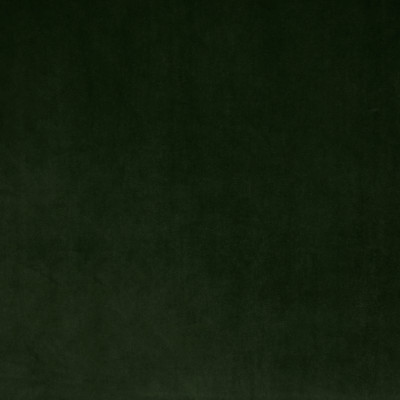 S1494 Windsor Green Fabric: S11, BORDEAUX, ANNA ELISABETH, DARK GREEN SOLID, DARK GREEN VELVET, GREEN VELVET