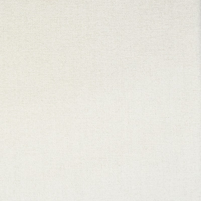 S1843 Winter Fabric: S17, ANNA ELISABETH, WHITE CHENILLE, TEXTURED CHENILLE, WHITE TEXTURE, WHITE PERFORMANCE, PERFORMANCE
