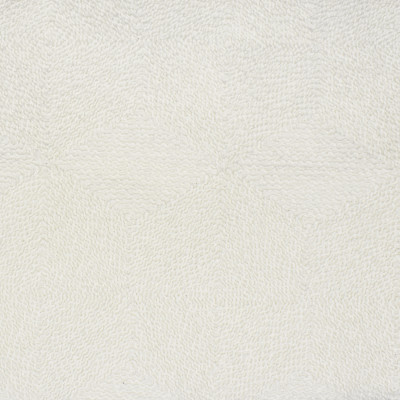 S1855 Coconut Fabric: S17, ANNA ELISABETH, WHITE WOVEN, TEXTURED WHITE, WHITE, WOVEN TEXTURE, PERFORMANCE, PERFORMANCE WHITE