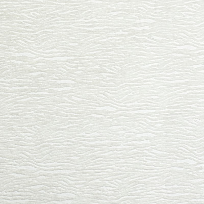 S1863 Ivory Fabric: S17, ANNA ELISABETH, WHITE CHENILLE SKIN, WHITE ZEBRA CHENILLE, WHITE SKIN, WHITE PERFORMANCE, PERFORMANCE, WHITE, SKIN, ANIMAL, ZEBRA, CHENILLE