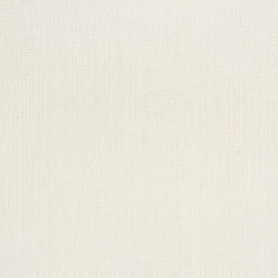 S1867 Snow Fabric: S17, ANNA ELISABETH, SOLID WHITE TEXTURE, WHITE WOVEN, WHITE TEXTURE, PERFORMANCE WHITE, PERFORMANCE, WHITE, TEXTURE, WHITE TEXTURE
