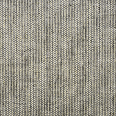 S2041 Platinum Fabric: S21, GRAY STRIPE, GRAY TICKING STRIPE, PLATINUM STRIPE, SILVER STRIPE, NARROW STRIPE, ANNA ELISABETH, STRIPE, TEXTURED STRIPE, TEXTURE, GRAY AND IVORY, WOVEN