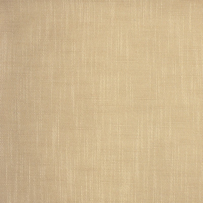S2135 Latte Fabric: S23, ANNA ELISABETH, INSIDE OUT, PERFORMANCE, PERFORMANCE FABRIC, PERFORMANCE FABRICS, INDOOR/OUTDOOR, OUTDOOR, STAIN RESISTANT, BLEACH CLEANABLE, EASY TO CLEAN, BEIGE, TEXTURE, NEUTRAL, NEUTRAL TEXTURE, BEIGE TEXTURE, WOVEN, WOVEN TEXTURE, FAUX LINEN