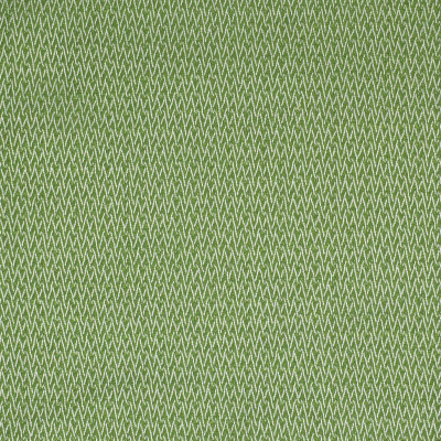 S2211 Endive Fabric: S25, ANNA ELISABETH, INSIDE OUT, OUTDOOR FABRIC, PERFORMANCE, HERRINGBONE, TEXTURE, GREEN
