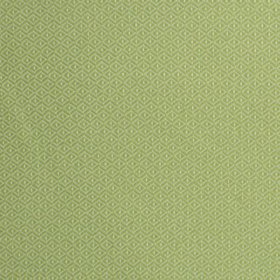 S2246 Lawn Fabric: S25, DIAMOND, DOT, GREEN, APPLE GREEN, LIME GREEN, INSIDE OUT, OUTDOOR FABRIC, PERFORMANCE, ANNA ELISABETH, BLEACH CLEANABLE